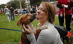 "Erica Schneider gets some love from ""Fred"" a 4-5 month old short hair Collie Mix in Lykes Gaslight Square Park. The Humane Society of Tampa Bay and Hillsborough County Animal Services held the ""Paw Party"" for the animals looking for adoption."