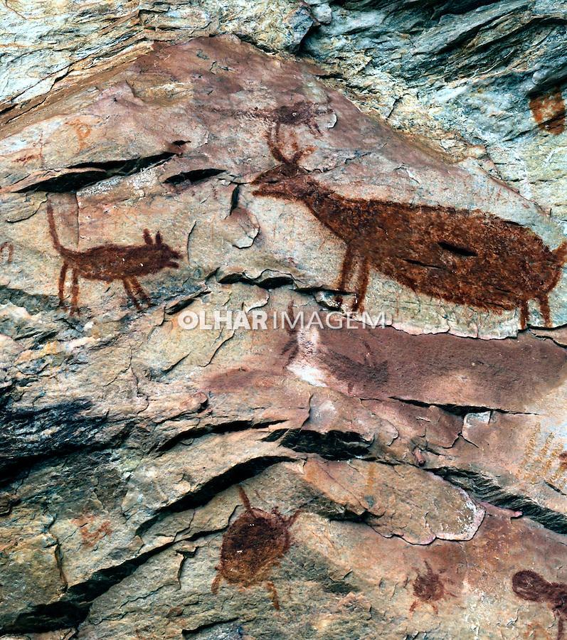 Pinturas rupestres no Sítio Arqueológico Pedra Pintada. Barão de Cocais. MG. Foto de Rogerio Reis.