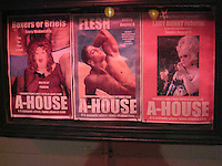 A-House Posters in Provincetown, MA August 2008