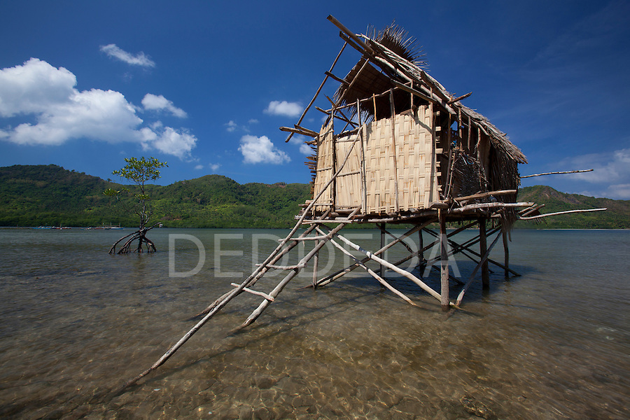 A small thatched stilt house sits in the bay near the tiny fishing village of Vigan near Snake Island and El Nido, in the Bacuit Archipelago in Palawan, Philippines.