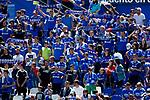 Getafe CF's supporters during La Liga match. May 05,2019. (ALTERPHOTOS/Alconada)