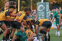 Tom Denton of Ealing Trailfinders celebrates after he during the Greene King IPA Championship match between Ealing Trailfinders and London Irish Rugby Football Club  at Castle Bar, West Ealing, England  on 1 September 2018. Photo by David Horn.