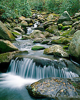 Waterfall and lichen-covered rocks in Roaring Fork; Great Smoky Mountains National Park, TN