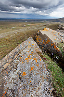 Orange lichen on rocks, Utukok uplands, National Petroleum Reserve Alaska, Arctic, Alaska.