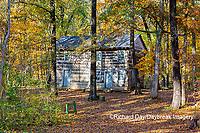 63895-16518 Cabin at Log Cabin Village in fall Kinmundy IL