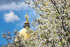 Apr. 27, 2015; Dome in Spring. (Photo by Matt Cashore/University of Notre Dame)