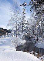 Germany, Bavaria, Upper Bavaria, Werdenfelser Land: Winter landscape near Oberammergau