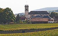 Vineyard. Pommard village with church. Pommard, Cote de Beaune, d'Or, Burgundy, France