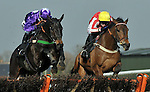 12/03/2012 - Anglo Irish Raceday - Plumpton Racecourse - East Sussex