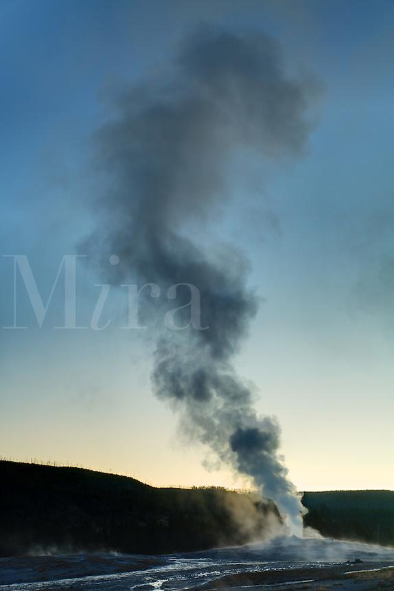 Old Faithful geyser erupting under early morning twilight sky, Yellowstone National Park, Wyoming, USA