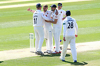 Jamie Porter of Essex is congratulated by his team mates after taking the wicket of Kyle Abbott during Essex CCC vs Hampshire CCC, Specsavers County Championship Division 1 Cricket at The Cloudfm County Ground on 21st May 2017