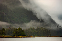 Fog and mist in the Chugach National Forest, Unakwik Inlet, Prince William Sound, Alaska.