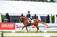 AUS-Annabel Armstrong rides Pumpernickel during the Dressage for the Horseland CCI3*-L. 2019 AUS-Mitsubishi Motors Australian International 3 Day Event. Victoria Park. Adelaide. South Australia. Thursday 14 November. Copyright Photo: Libby Law Photography