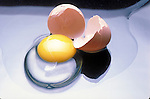 broken chicken egg