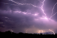 Anvil crawlers, a form of cloud-to-cloud lightning, splays it's raw power across the night sky as a thunderstorm complex moves east of Norman Oklahoma in July.