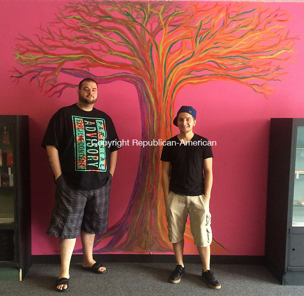 TORRINGTON, CT - 08 July 2015 - 070815CH4 -- Owners Joshua Veilleux and Dylan Stewart opened their store, VS, in hopes of offering trending fashion to Torrington residents. The best friends have been raising funds to open their business for six years. Carrie Grace Henderson Republican-American
