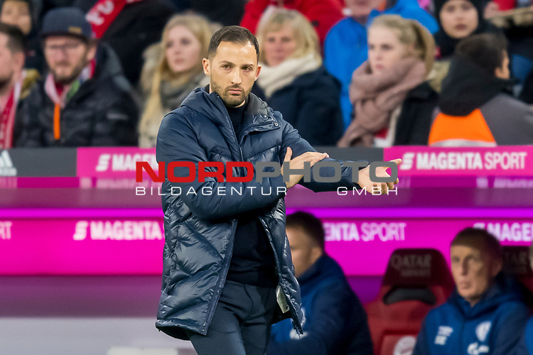 09.02.2019, Allianz Arena, Muenchen, GER, 1.FBL,  FC Bayern Muenchen vs. FC Schalke 04, DFL regulations prohibit any use of photographs as image sequences and/or quasi-video, im Bild Domenico Tedesco (Trainer Schalke) <br /> <br />  Foto &copy; nordphoto / Straubmeier