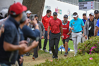 Tiger Woods (USA) and Louis Oosthuizen (RSA) head to 18 during round 4 of the World Golf Championships, Mexico, Club De Golf Chapultepec, Mexico City, Mexico. 2/24/2019.<br /> Picture: Golffile | Ken Murray<br /> <br /> <br /> All photo usage must carry mandatory copyright credit (© Golffile | Ken Murray)