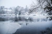 Snow12-28-15