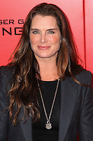 "NEW YORK, NY - NOVEMBER 20: Brooke Shields at the New York Premiere Of Lionsgate's ""The Hunger Games: Catching Fire"" held at AMC Lincoln Square Theater on November 20, 2013 in New York City. (Photo by Jeffery Duran/Celebrity Monitor)"