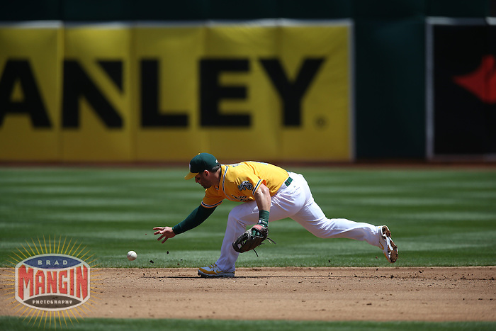 OAKLAND, CA - APRIL 23:  Nick Punto #1 of the Oakland Athletics makes an error at second base against the Texas Rangers during the game at O.co Coliseum on Wednesday, April 23, 2014 in Oakland, California. Photo by Brad Mangin