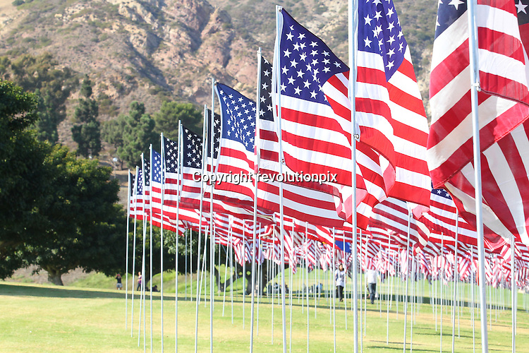Flags<br />