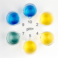 pH INDICATOR: Range Of Bromothymol Blue (3 of 3)<br />