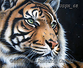 Sandi, REALISTIC ANIMALS, REALISTISCHE TIERE, ANIMALES REALISTICOS, paintings+++++,USSN68,#a#, EVERYDAY ,tiger,tigers, ,puzzles