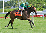 August 10, 2019: Sistercharlie (IRE), trained by Chad Brown, wins the Beverly D Stakes (G1) at Arlington Park on August 10, 2019 in Arlington Heights, IL. Jessica Morgan/ESW/CSM