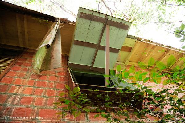 Chacachacare, derelict leper colony, jalousie windows