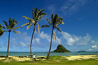 Chinamans Hat(Mokolii island)is a distinguished landmark and tourist attraction at the Kualoa Regional park located along windward oahu across from the popular Kualoa Ranch.