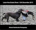 Luton Hoo Estate Shoot  13th December 2013
