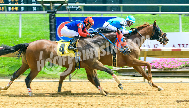 Dr. Toole winning at Delaware Park on 7/15/17