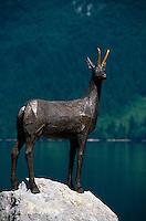 Slowenien.  Bohin-See, Denkmal