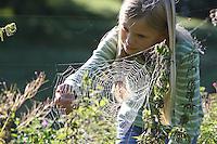 Mädchen beobachtet Spinnenetz im Morgentau, Radnetzspinne, Radnetz, Kreuzspinne