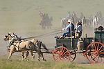 Cowboys and pioneers in a covered horse drawn wagon speed along during the annual Custer Battle of the Little Bighorn reenactment in Hardin, Montana