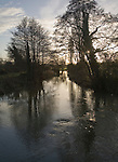 Winter landscape trees and water with low sun in sky River Deben, Ufford, Suffolk, England