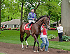 Broomsage before The Our Mims Stakes at Delaware Park on 5/18/13