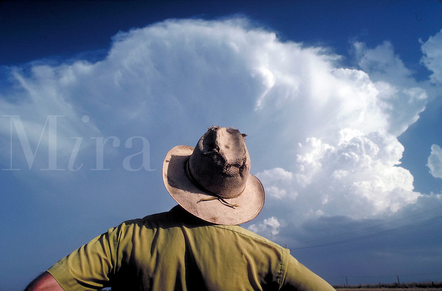 Wheat farmer (seen from behind) watches huge clouds rise above summer Kansas wheat field during the June harvest of winter wheat. occupations. Lester Ewy. Kansas, Reno County.