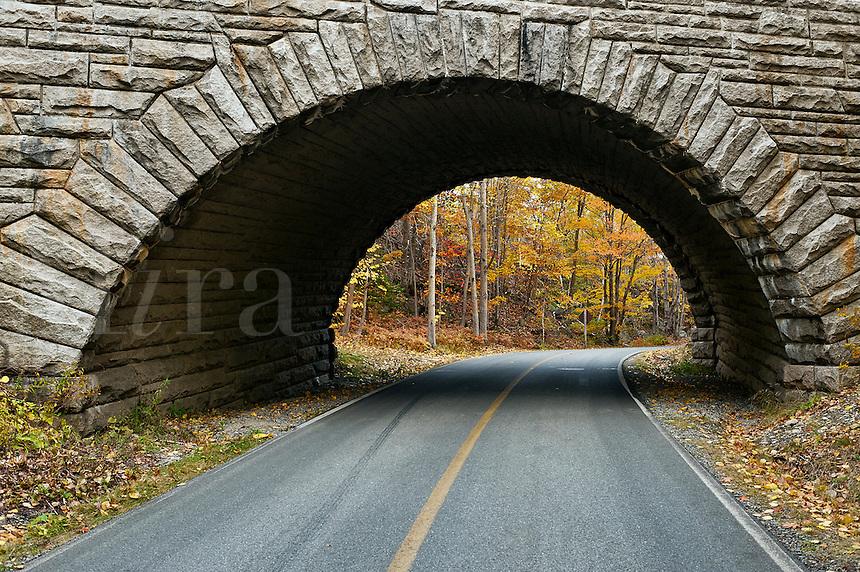 Road through Acadia NP, Maine, ME, USA