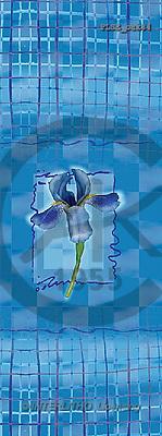 Jacek, FLOWERS, portrait, macro, photos, PLSE, PLSEbak34,#F# Blumen, flores, retrato