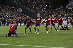22 November 2009: Salt Lake's Robbie Findlay (10) and Nat Borchers (6) lead the rush as Salt Lake's players mob Robbie Russell (GHA) (3) after his championship winning penalty kick. Real Salt Lake defeated the Los Angeles Galaxy 5-4 on penalty kicks after the teams played to a 1-1 overtime tie at Qwest Field in Seattle, Washington in MLS Cup 2009, Major League Soccer's championship game.