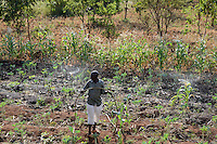 KENYA, Mount Kenya East, Region South Ngariama , farmer irrigates Khat and vegetable plants with sprinkler system / KENIA, Farmer betreibt eine Sprenklerbewaesserung von einem kugelfoermigen Wassertank, Bewaesserung der Kaudroge Khat und Gemuese Pflanzen