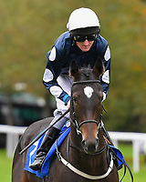 Hurricane Lil ridden by Liam Keniry goes down to the start of The Bathwick Car & Van Hire Novice Auction Stakes        during Bathwick Tyres Reduced Admission Race Day at Salisbury Racecourse on 9th October 2017