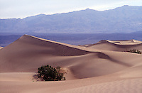DEATH VALLEY<br /> (Variations Available)<br /> Linear Sand Dune<br /> <br /> Wind blown sand forms dunes through saltation. Sand grains bounce as they are moved by the wind, displacing other grains to form ripples. In time the ripples grow to ridges and eventually dunes.