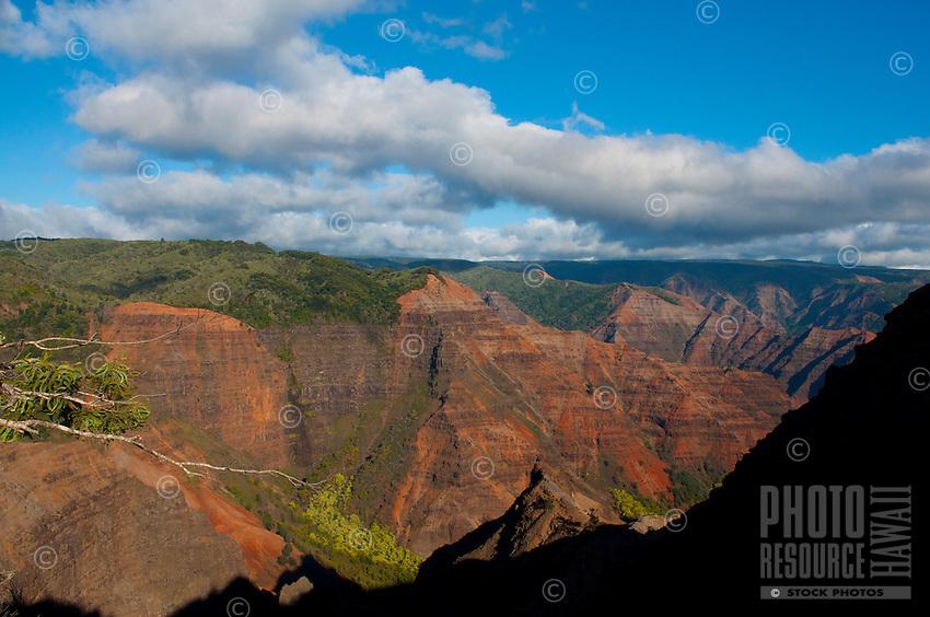 Kauai's spectacular Waimea Canyon is 10 miles long, one mile wide, and 3,500 feet deep.