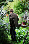 """Writer and poet August Kleinzahler, 60, walks through the backyard of his home, in San Francisco, Ca., on Friday, February 6, 2008. Kleinzahler recently published his tenth collection of poetry, """"Sleeping it off in Rapid City"""" last year."""