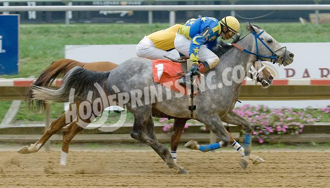 Butch Cassidy LZP winning at Delaware Park on 10/25/12