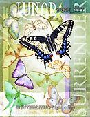 Randy, STILL LIFE STILLLEBEN, NATURALEZA MORTA, paintings+++++Lunar-Surrender,USRW117,#i# butterfly