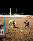 USA, Wyoming, rodeo clown and bull, Cody Rodeo